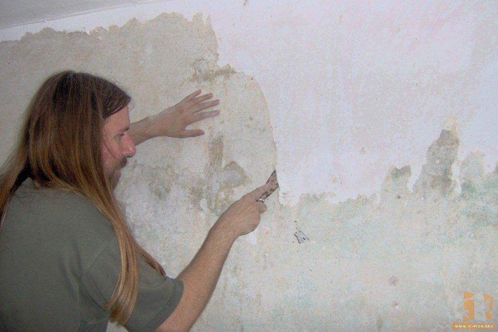Alte Tapete Entfernen Und Streichen : der angefeuchteten alten Tapete mit vier oder f?nf Farbschichten